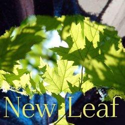New Leaf Band - Lose My Mind