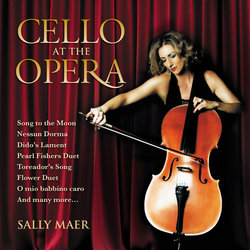Sally Maer - Time to Say Goodbye - Internet Download