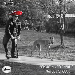 Reporting To Charlie - Maybe I Should - Internet Download