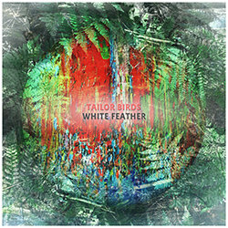 Tailor Birds - White Feather - Internet Download