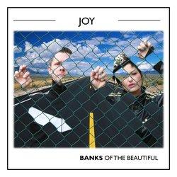 Banks Of The Beautiful - Joy (Radio Edit) - Internet Download