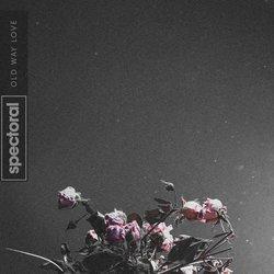 Spectoral - Love Somebody Else