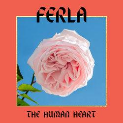 FERLA - The Human Heart