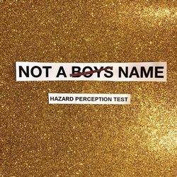 NOT A BOYS NAME - Hazard Perception Test