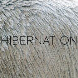 NAKATOMI - Hibernation