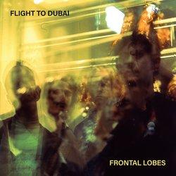 Flight To Dubai - Hail Damage