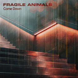 Fragile Animals - Come Down