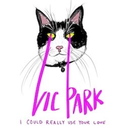 Vic Park - I Could Really Use Your Love