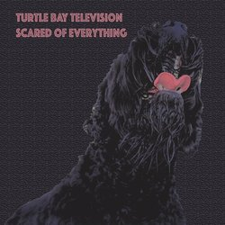 Turtle Bay Television  - I Don't Need the Devil to Hate Myself