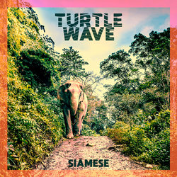 Turtle Wave - Siamese