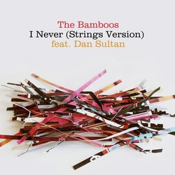 The Bamboos - I Never