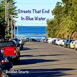 Goldfish Smarts - Streets That End In Blue Water