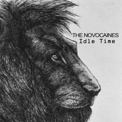 The Novocaines - The Leisure