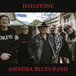 Amnesia Blues Band - Never Loved You Anyway