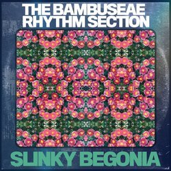 The Bambuseae Rhythm Section - Slinky Begonia - Internet Download