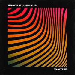 Fragile Animals - Waiting - Internet Download
