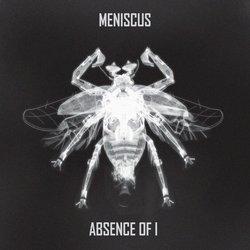 Meniscus - Mother