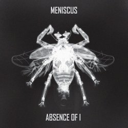 Meniscus - Pilot - Internet Download