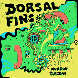 Dorsal Fins - Monday Tuesday