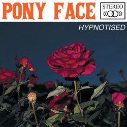 Pony Face - Holly Said