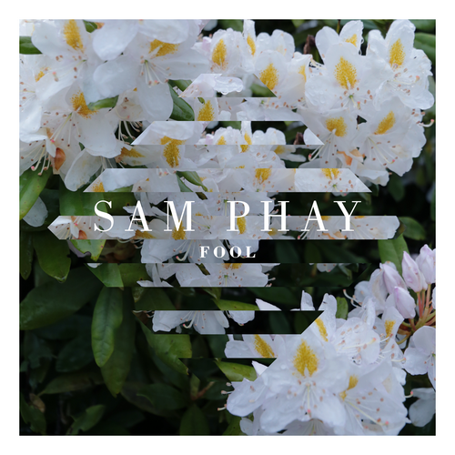 Sam Phay - Fool