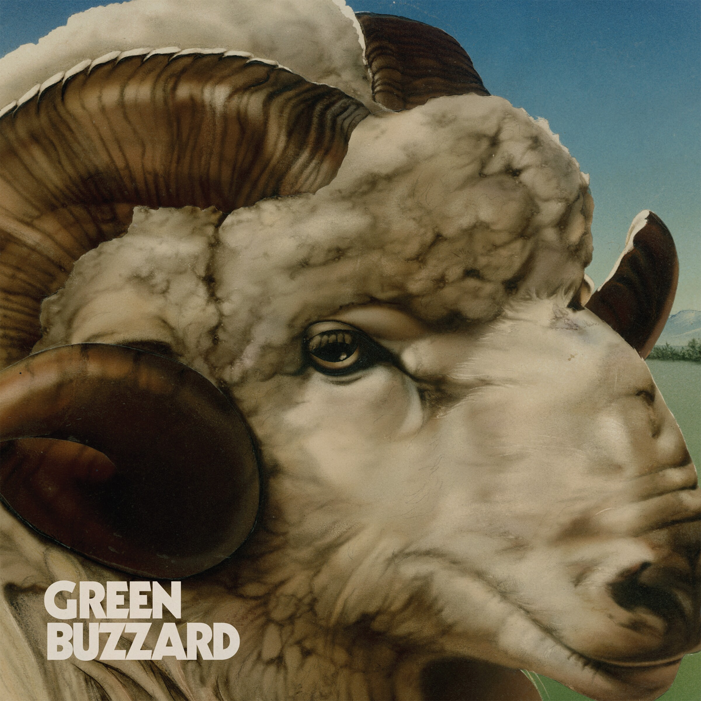 Green Buzzard - Slow It Down Now