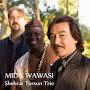 Shohrat Tursun Trio - Mida Wawasi