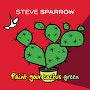 Steve Sparrow - Paint Your Cactus Green