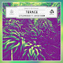 Terace - Little Higher (Feat. Xavier Dunn)