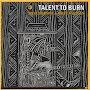 Steve Wernick & Rolfe Knudsen - Talent to Burn