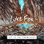 Luke Fox - Fly in the Champagne