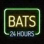 BATS  - 24 Hours