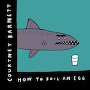 Courtney Barnett - How To Boil An Egg