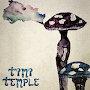 Timi Temple - Sorry Isn't Magic