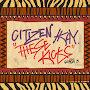 Citizen Kay - These Kicks