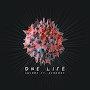 SHVRDZ - One Life (ft. Aerborn)