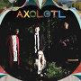 Axolotl - Garden Lane