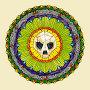Turtle Skull - Eden
