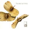 Tarcutta - Liberace Fibonacci