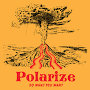 Polarize - Do What You Want