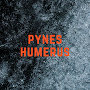 PYNES - HUMERUS