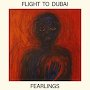 Flight To Dubai - Fearlings
