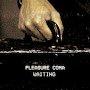 Pleasure Coma - Wating