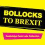 Cambridge Punk Lute Collective - Bollocks to Brexit