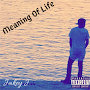Jakey J - Meaning Of Life