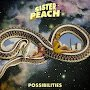 Sister Peach - Possibilities