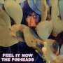 The Pinheads - Feel It Now