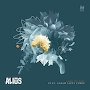 ALIUS - Lose To You feat. Sarah Saint James