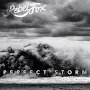 Rebel Fox - Perfect Storm