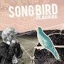 Flaskas  - Songbird